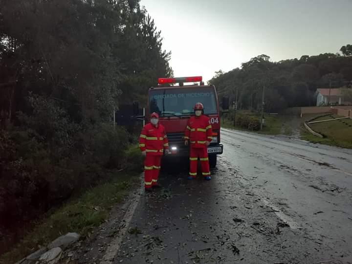 Brigada Independente Voluntaria de Paulo Frontin realiza trabalho de desobstrução da Rodovia BR 153 após temporal