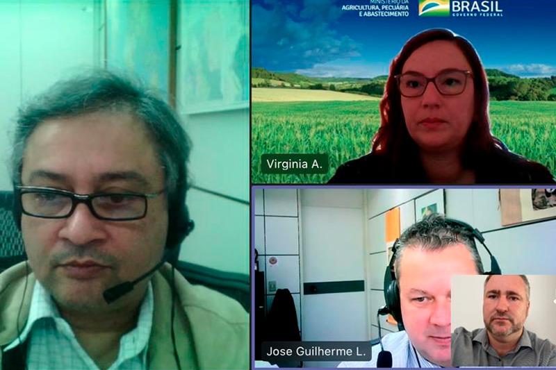 Deputado Bacil aborda Pinheiro Araucária e extensão de exame do mormo, com Ministério da Agricultura