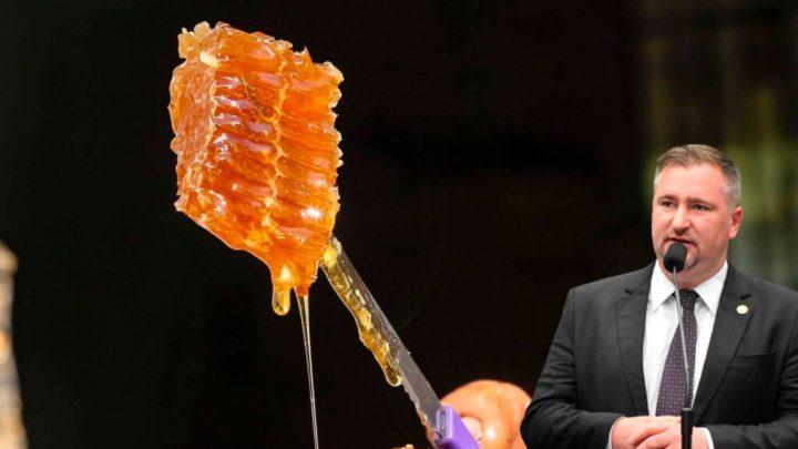 Paraná alcança liderança do Brasil na produção de mel