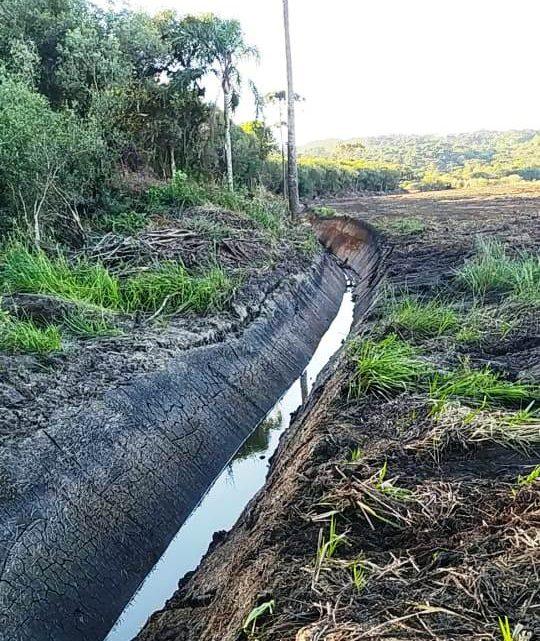 Policiais ambientais constataram destruição de vegetação na localidade de Espigãozinho