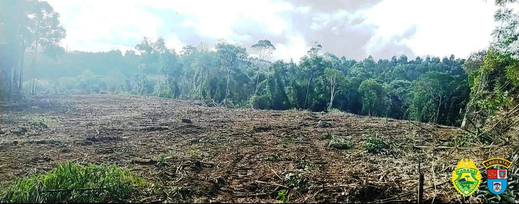 Morador de Paulo Frontin recebe multa de 35 mil reais por destruição de vegetação
